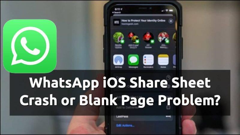 whatsapp ios share sheet not working
